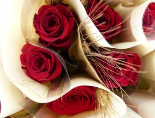 Els alumnes de 6è vendran roses per Sant Jordi