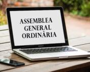 asemblea general ordinària